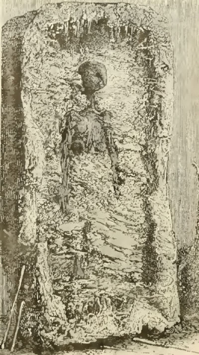 flammarion_1881_martian_mummy
