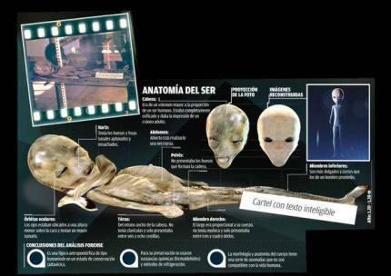 roswell-slide-anatomia-del-ser